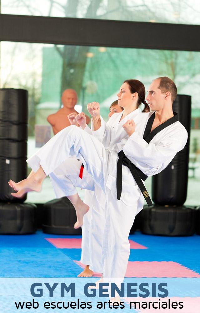 diseño web escuela artes marciales